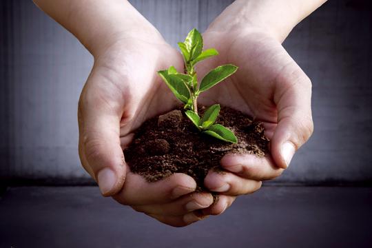 Ecologie et politique. Le progrès peut-il être durable ?