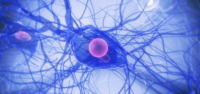 Pourquoi est-il difficile de définir perturbateurs endocriniens ? (Audio)