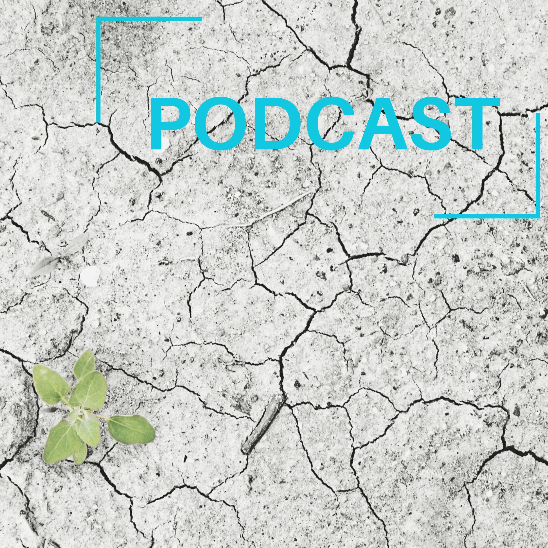 Réussir la transition écologique de l'Europe ? [Chronique Europe du 6 décembre | RCF]